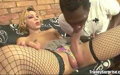 Black guy sucks dirty trannys cocks with pleasure